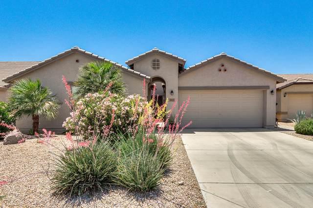 665 W Desert Valley Drive, San Tan Valley, AZ 85143 (MLS #6237040) :: The Laughton Team