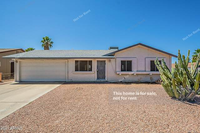 117 W Kerry Lane, Phoenix, AZ 85027 (MLS #6237056) :: Yost Realty Group at RE/MAX Casa Grande