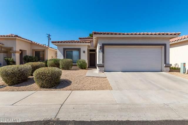 1018 E Susan Lane, Tempe, AZ 85281 (MLS #6237078) :: Midland Real Estate Alliance