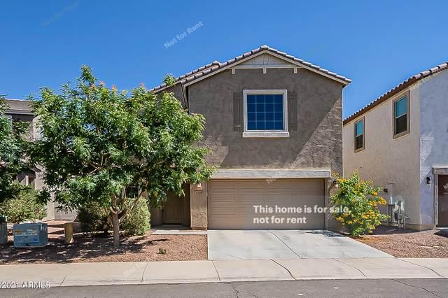 1229 E Taylor Trail, San Tan Valley, AZ 85143 (MLS #6237129) :: Yost Realty Group at RE/MAX Casa Grande