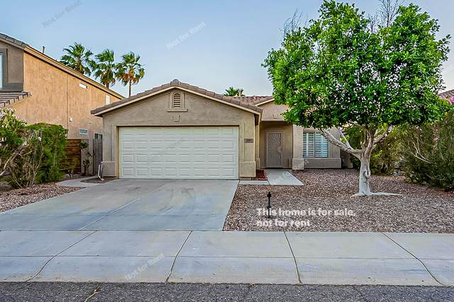 1747 W Muirwood Drive, Phoenix, AZ 85045 (MLS #6237204) :: Zolin Group