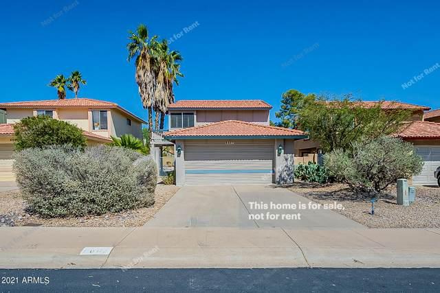 9607 S 43RD Place, Phoenix, AZ 85044 (MLS #6237207) :: Yost Realty Group at RE/MAX Casa Grande