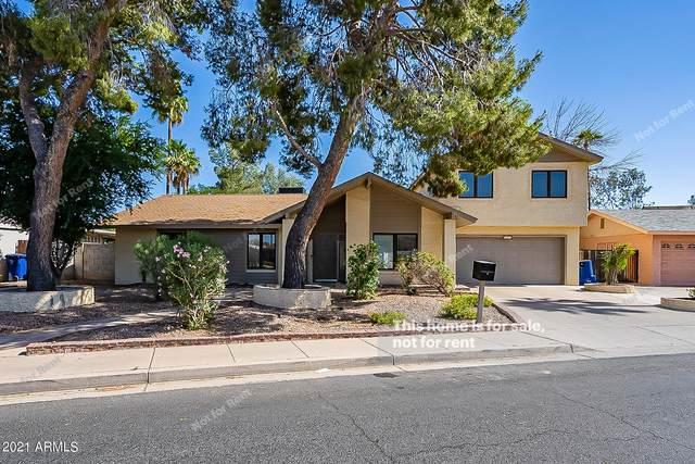 845 W Javelina Avenue, Mesa, AZ 85210 (MLS #6237255) :: Arizona Home Group