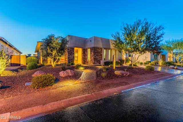 30228 N 117TH Drive, Peoria, AZ 85383 (MLS #6237292) :: The Newman Team