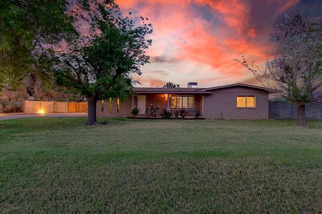 4246 E Emelita Avenue, Mesa, AZ 85206 (MLS #6237326) :: Executive Realty Advisors