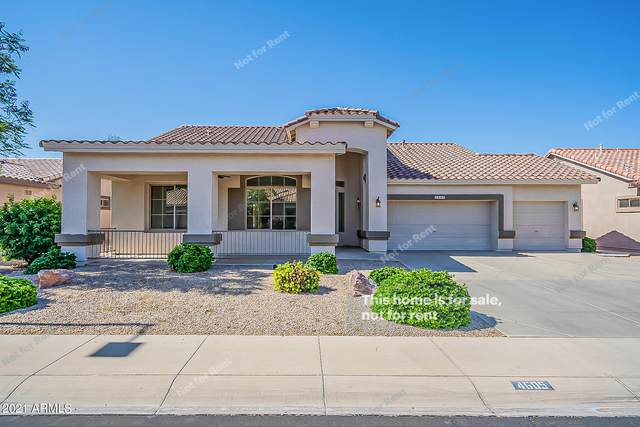 4605 E Nightingale Lane, Gilbert, AZ 85298 (MLS #6237378) :: Zolin Group