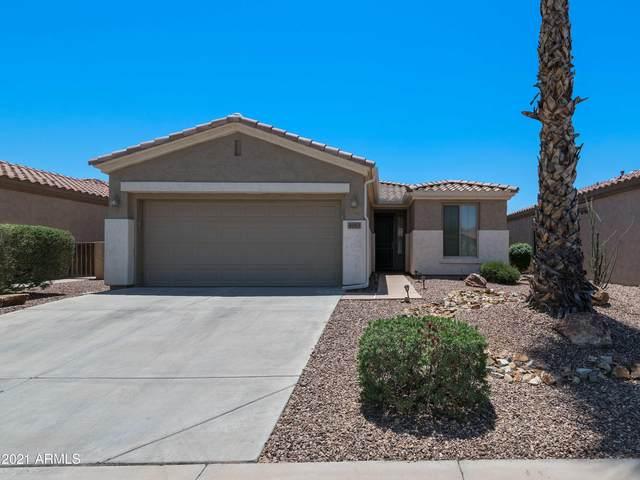 4063 E Jude Lane, Gilbert, AZ 85298 (MLS #6237556) :: Zolin Group