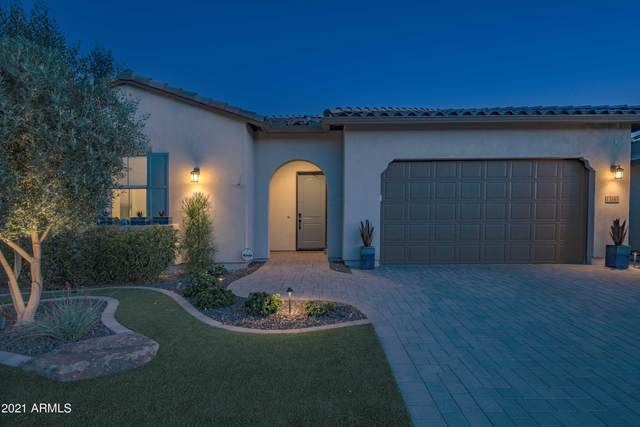 13145 W Morning Vista Drive, Peoria, AZ 85383 (MLS #6237590) :: Zolin Group