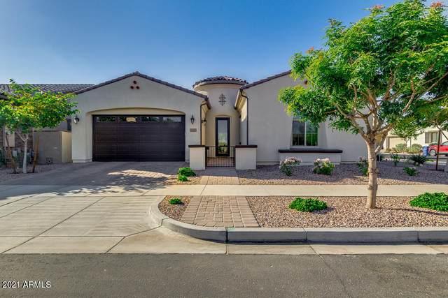 10222 E Bergeron Avenue, Mesa, AZ 85212 (MLS #6237622) :: Arizona Home Group