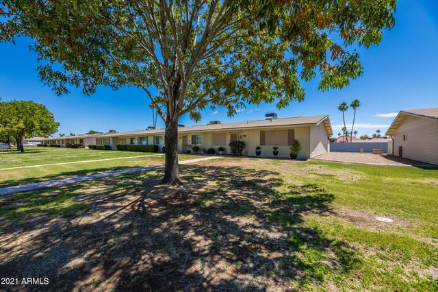 13675 N Newcastle Drive, Sun City, AZ 85351 (MLS #6237623) :: The Property Partners at eXp Realty