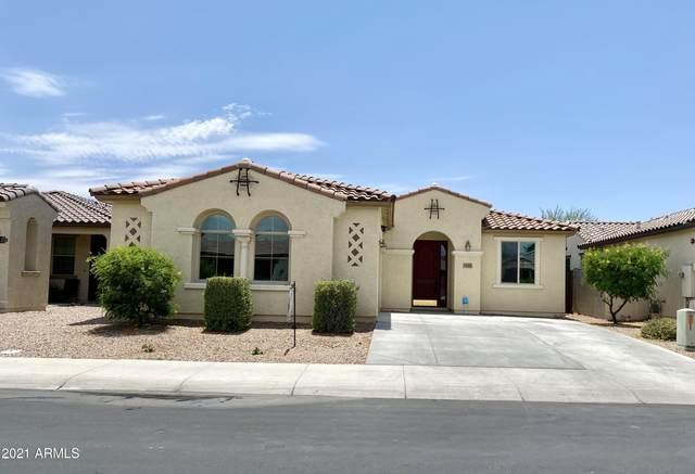 9149 W Dreyfus Drive, Peoria, AZ 85381 (MLS #6237922) :: Nate Martinez Team