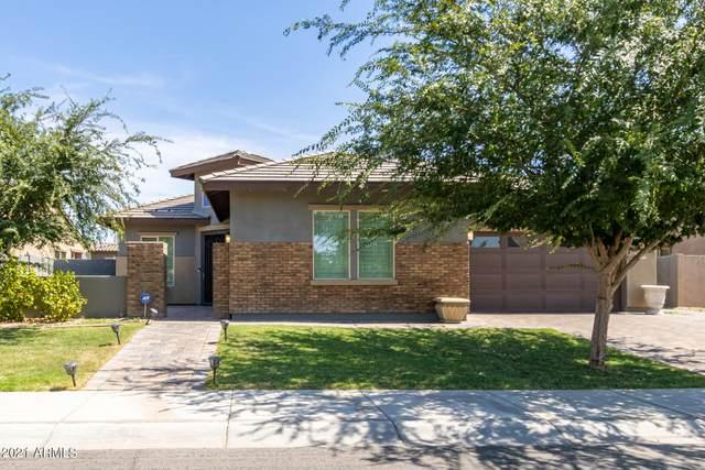 3451 E Orleans Drive, Gilbert, AZ 85298 (MLS #6238202) :: Relevate | Phoenix