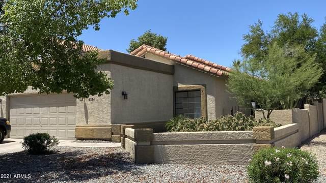 4354 E Dry Creek Road, Phoenix, AZ 85044 (MLS #6238297) :: Yost Realty Group at RE/MAX Casa Grande