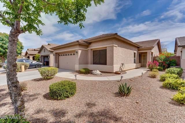 44189 W Pioneer Road, Maricopa, AZ 85139 (MLS #6238411) :: Klaus Team Real Estate Solutions