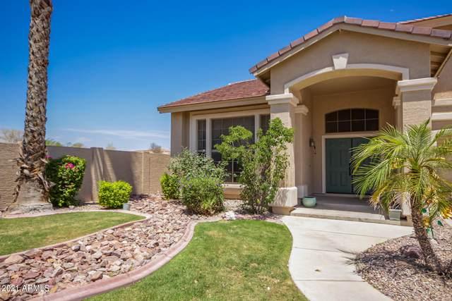 5331 N Pajaro Court, Litchfield Park, AZ 85340 (MLS #6238420) :: Yost Realty Group at RE/MAX Casa Grande