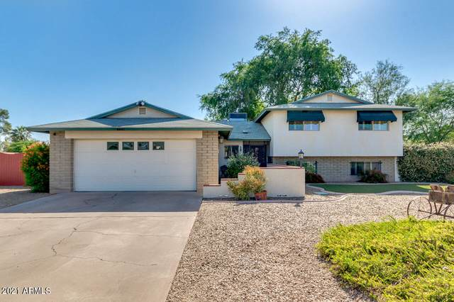 4442 N 61ST Avenue, Phoenix, AZ 85033 (MLS #6238476) :: Yost Realty Group at RE/MAX Casa Grande