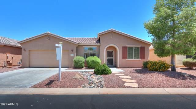 20217 N Laguna Way, Maricopa, AZ 85138 (MLS #6238521) :: Yost Realty Group at RE/MAX Casa Grande