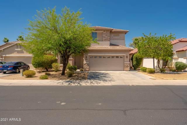 17278 W Smokey Drive, Surprise, AZ 85388 (MLS #6238593) :: Conway Real Estate