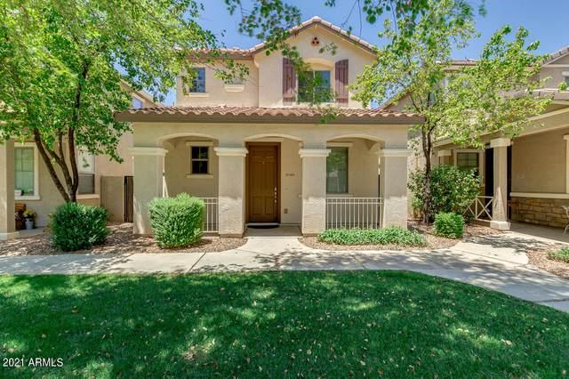 3806 E Trigger Way, Gilbert, AZ 85297 (MLS #6238609) :: Yost Realty Group at RE/MAX Casa Grande