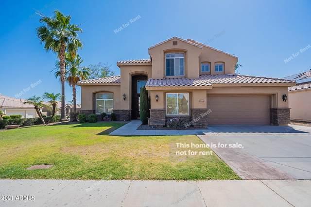 6805 W Williams Drive, Glendale, AZ 85310 (MLS #6238757) :: Yost Realty Group at RE/MAX Casa Grande