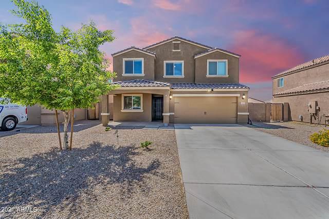 13167 E Desert Lily Lane, Florence, AZ 85132 (MLS #6238779) :: Yost Realty Group at RE/MAX Casa Grande