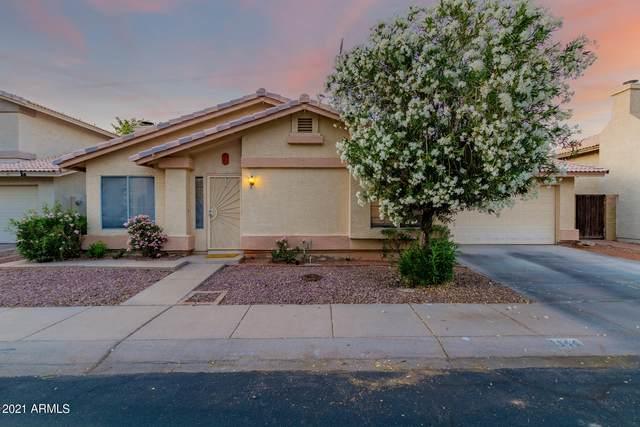 1144 E Liberty Shores Drive, Gilbert, AZ 85234 (MLS #6238781) :: Yost Realty Group at RE/MAX Casa Grande