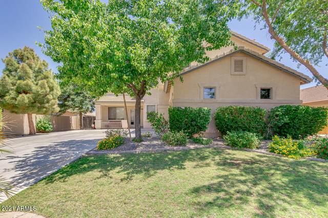 4542 E Desert Sands Drive, Chandler, AZ 85249 (MLS #6238796) :: My Home Group