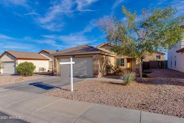 22315 W Morning Glory Street, Buckeye, AZ 85326 (MLS #6238857) :: CANAM Realty Group