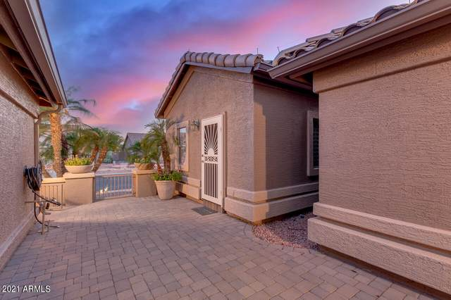 15018 W Mulberry Drive, Goodyear, AZ 85395 (MLS #6238961) :: Yost Realty Group at RE/MAX Casa Grande