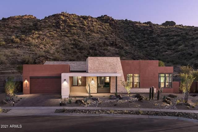 9539 S 13TH Way, Phoenix, AZ 85042 (MLS #6238998) :: Yost Realty Group at RE/MAX Casa Grande