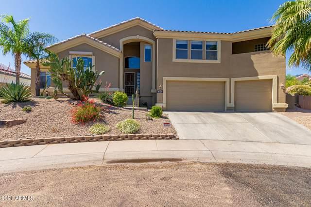 1617 E Tierra Buena Lane, Phoenix, AZ 85022 (MLS #6239037) :: Yost Realty Group at RE/MAX Casa Grande