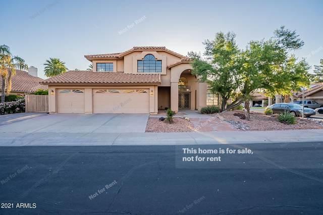 832 W Wagner Drive, Gilbert, AZ 85233 (MLS #6239045) :: Yost Realty Group at RE/MAX Casa Grande
