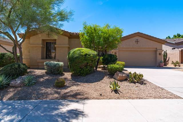 22342 N 76TH Place, Scottsdale, AZ 85255 (MLS #6239205) :: Yost Realty Group at RE/MAX Casa Grande