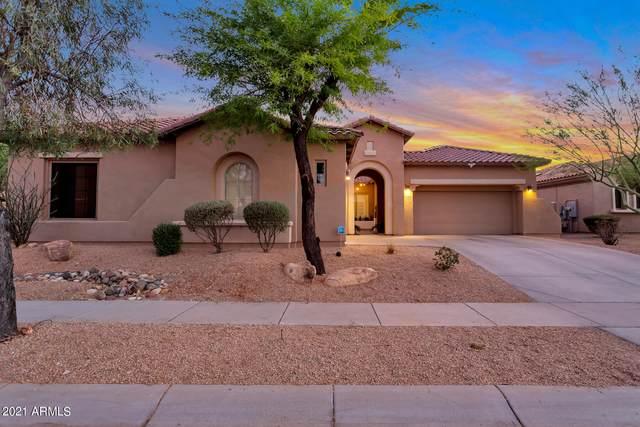 1723 W Brianna Road, Phoenix, AZ 85085 (MLS #6239211) :: Yost Realty Group at RE/MAX Casa Grande