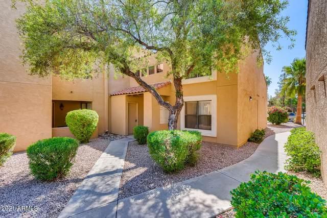 8787 E Mountain View Road #1036, Scottsdale, AZ 85258 (MLS #6239264) :: Keller Williams Realty Phoenix