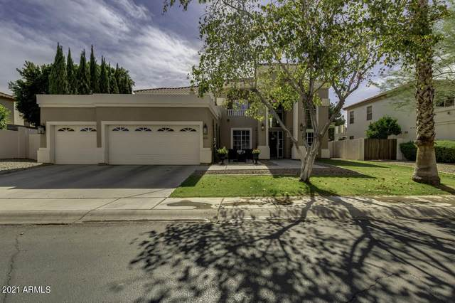 608 N Acacia Drive, Gilbert, AZ 85233 (MLS #6239414) :: My Home Group