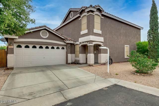 3350 S Conestoga Road, Apache Junction, AZ 85119 (MLS #6239495) :: Yost Realty Group at RE/MAX Casa Grande