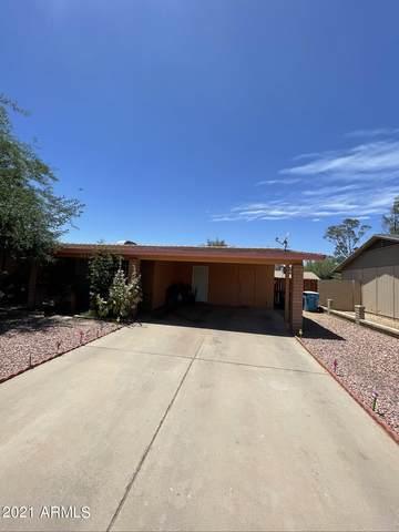 3338 N 77TH Avenue, Phoenix, AZ 85033 (MLS #6239576) :: Yost Realty Group at RE/MAX Casa Grande