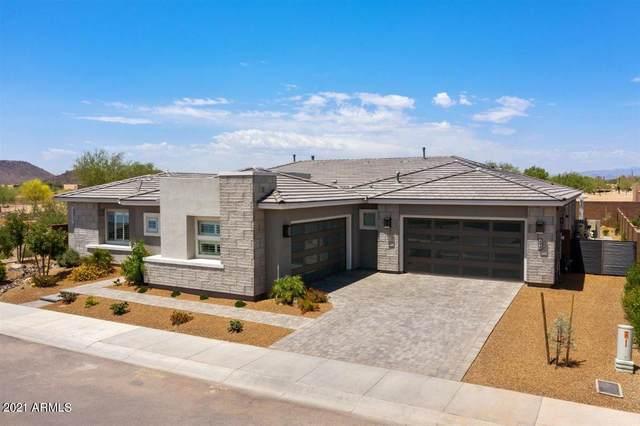 2838 E Cashman Drive, Phoenix, AZ 85050 (MLS #6239646) :: Yost Realty Group at RE/MAX Casa Grande