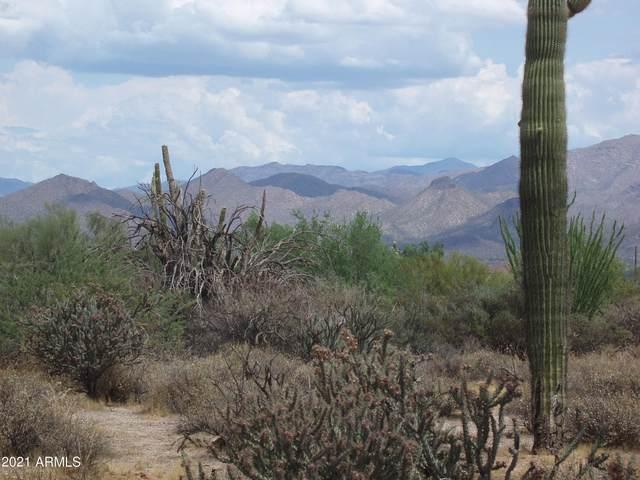 17340 E Pinnacle Vista Drive, Scottsdale, AZ 85262 (MLS #6239648) :: Nate Martinez Team