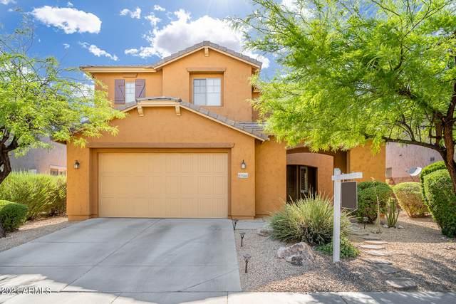 27546 N 90TH Lane, Peoria, AZ 85383 (MLS #6239665) :: Maison DeBlanc Real Estate
