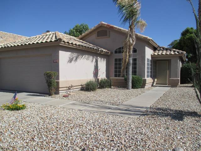 7459 W Louise Drive, Glendale, AZ 85310 (MLS #6239698) :: Yost Realty Group at RE/MAX Casa Grande