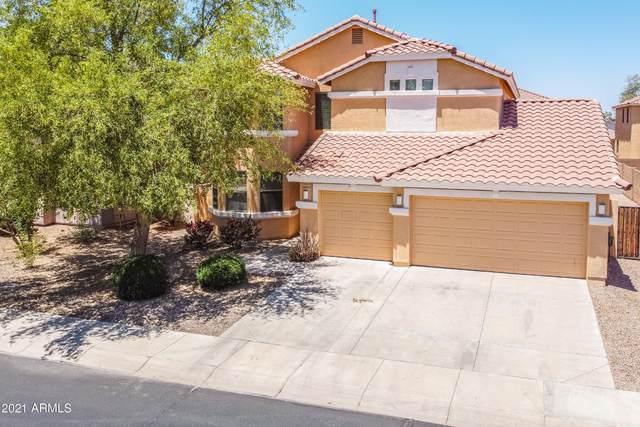 43554 W Roth Road, Maricopa, AZ 85138 (MLS #6239785) :: CANAM Realty Group