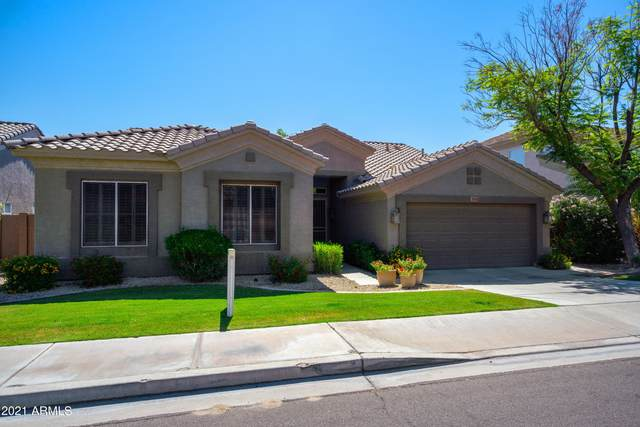 3761 S Barberry Place, Chandler, AZ 85248 (MLS #6239893) :: Yost Realty Group at RE/MAX Casa Grande