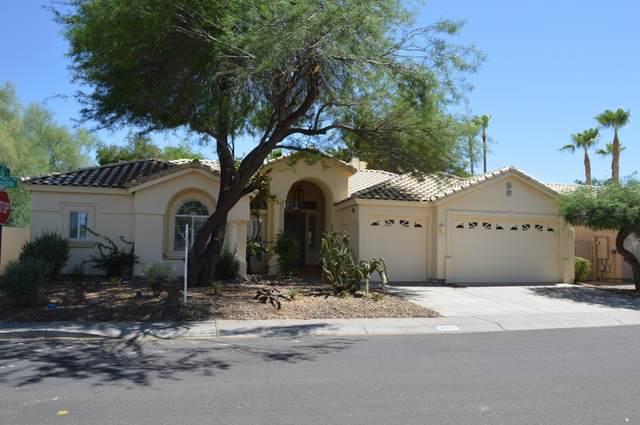8993 E Wood Drive, Scottsdale, AZ 85260 (MLS #6239920) :: Yost Realty Group at RE/MAX Casa Grande