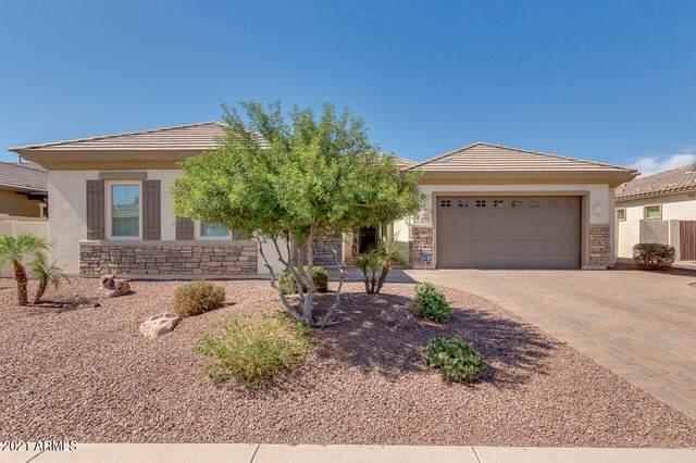 1154 E Reliant Street, Gilbert, AZ 85298 (MLS #6239968) :: Yost Realty Group at RE/MAX Casa Grande