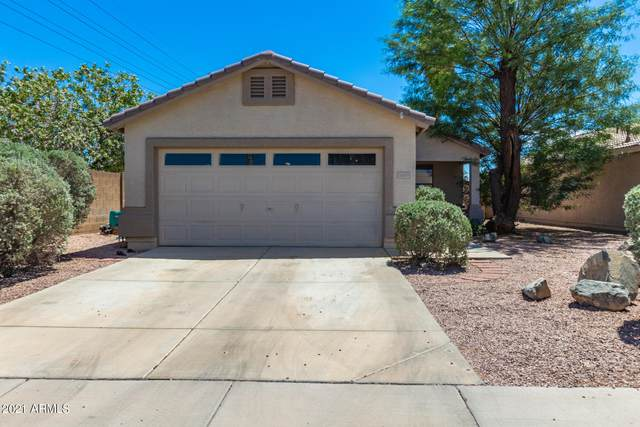 16609 N 114TH Drive, Surprise, AZ 85378 (MLS #6239989) :: Yost Realty Group at RE/MAX Casa Grande
