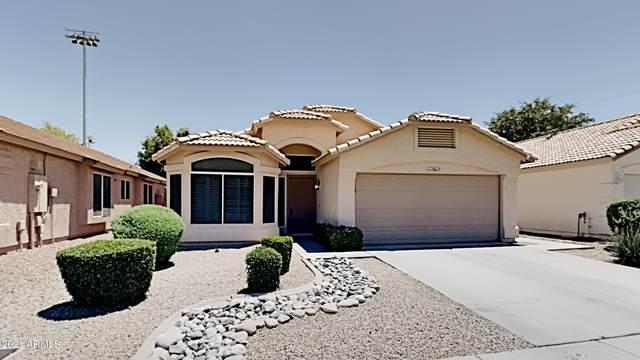 18617 N 16TH Place, Phoenix, AZ 85024 (MLS #6240012) :: Yost Realty Group at RE/MAX Casa Grande
