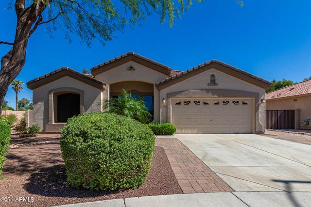 7902 W Alex Avenue, Peoria, AZ 85382 (MLS #6240096) :: Yost Realty Group at RE/MAX Casa Grande