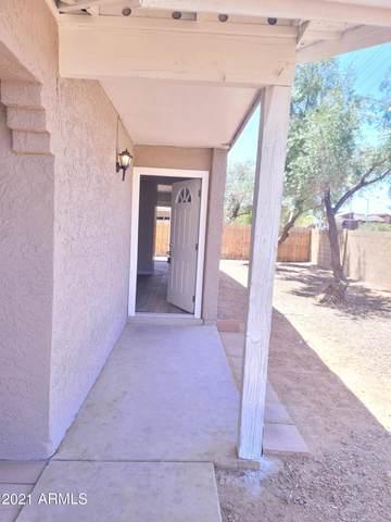 1205 E Grove Circle, Mesa, AZ 85204 (MLS #6240237) :: Yost Realty Group at RE/MAX Casa Grande